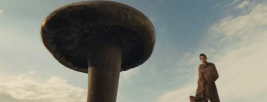 slow west mushroom copy